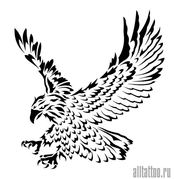 рисунок орла тату