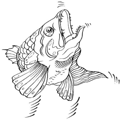эскизы рыб: