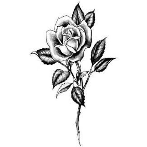 Тату черно белые эскизы цветов